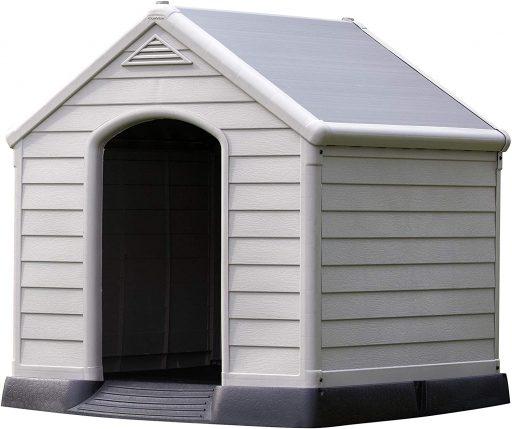 interior de casa para perros